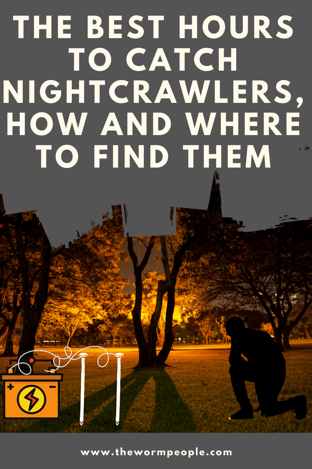 when-do-nightcrawlers-come-out-at-night